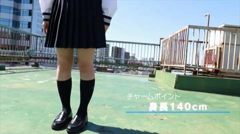 平花-088